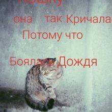 2017-12-06_5a281c80e4b81_P71205-175957